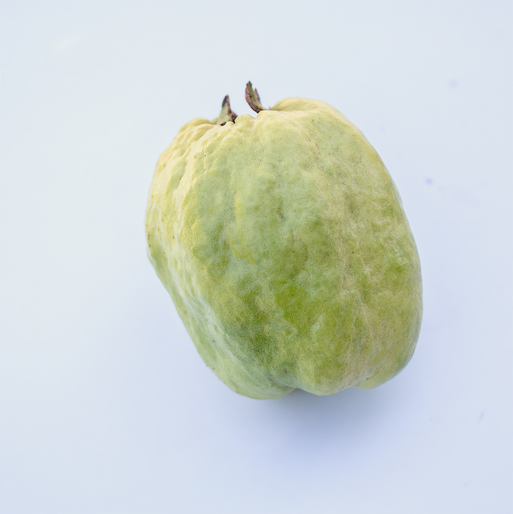 Seedless Guava - Unique aroma& great fruit must have
