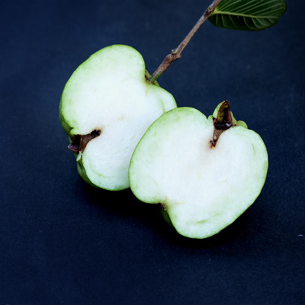 Seedless Guava Apple Guava Ch Fruit Tree Nursery